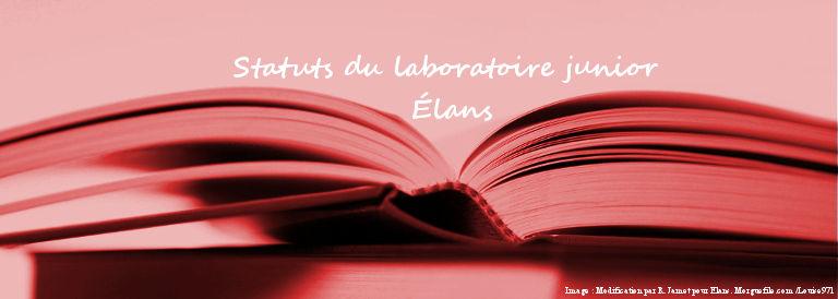 Statuts du Laboratoire Junior de l'EA 3556 REIGENN