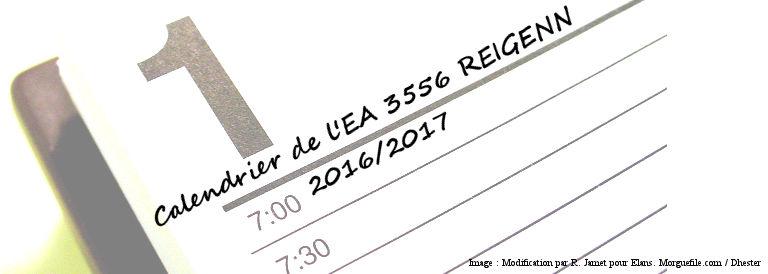 Journées d'Etudes et Colloques 2016/2017 : Programme de l'EA 3556 REIGENN